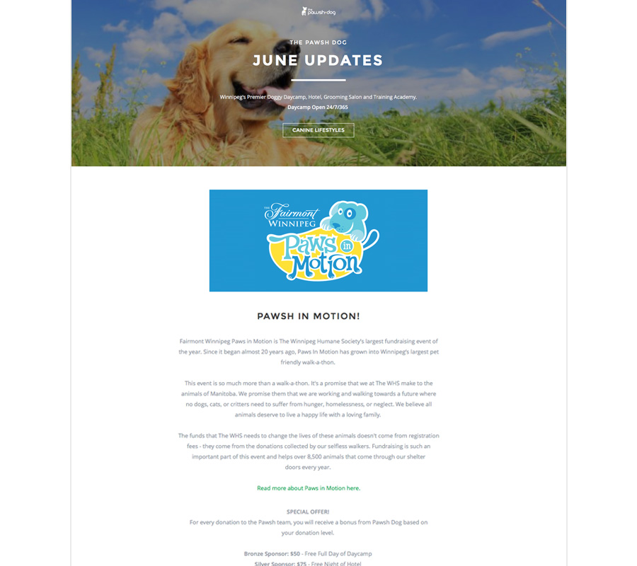 Paws in Motion email newsletter designed by 6P Marketing