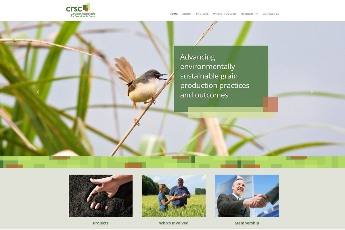 CRSC website designed by 6P Marketing