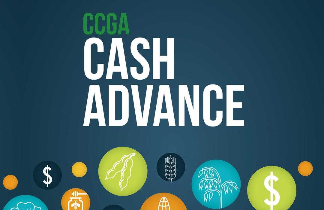 CCGA marketing materials designed by 6P Marketing