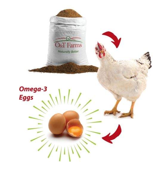 O&T Farms communicates benefits of omega-3s for humans and animals