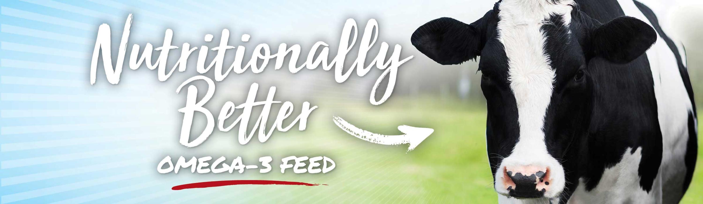 O&T Farms website header designed by 6P Marketing